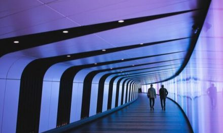 Lavori del Futuro – Quali sono e saranno le professioni più ricercate?