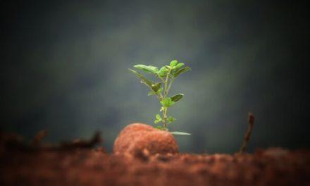 Destrutturazione – Conoscere se stessi dalle fondamenta